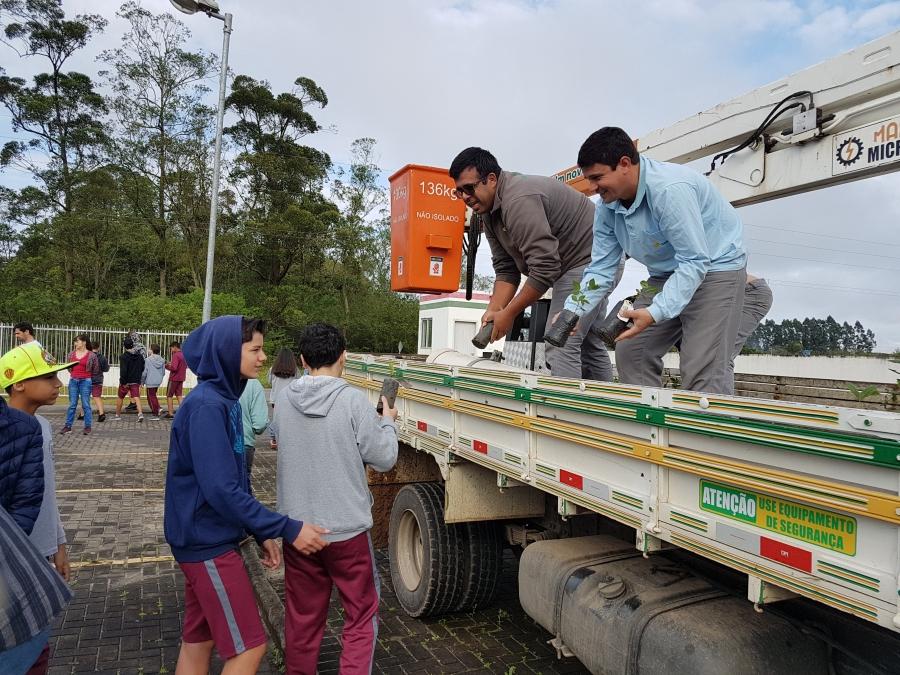 Cersul faz doação de mudas nativas em comemoração ao Dia da Árvore